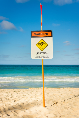 Warning sign indicating jellyfish sighted in the ocean at Waimanalo Beach on the island of Oahu, Hawaii.