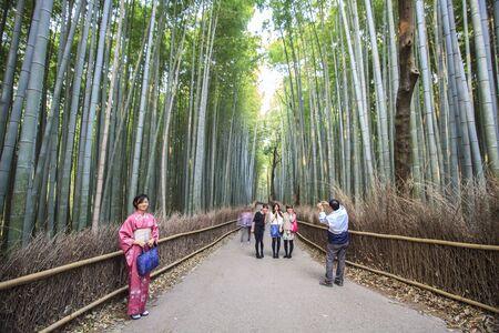The Bamboo Grove panorama in Arashiyama, Kyoto, Japan