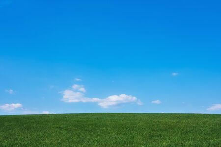 Photo pour Image of green grass field and bright blue sky background - image libre de droit