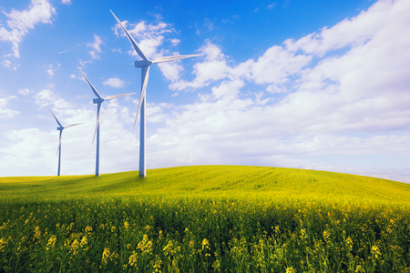 Photo pour Eco green power station, wind turbines at the spring yellow field - image libre de droit