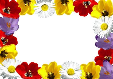 Photo pour Flower frame  - image libre de droit