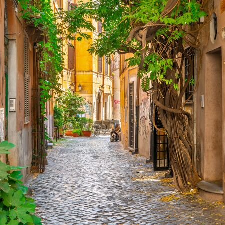 Photo for Cozy street with plants in Trastevere, Rome, Europe. Trastevere is a romantic district of Rome, along the Tiber in Rome. Turistic attraction of Rome. - Royalty Free Image