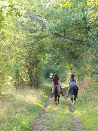 Two girls ride horse bare back away from the camera down a leafy autumn lane.
