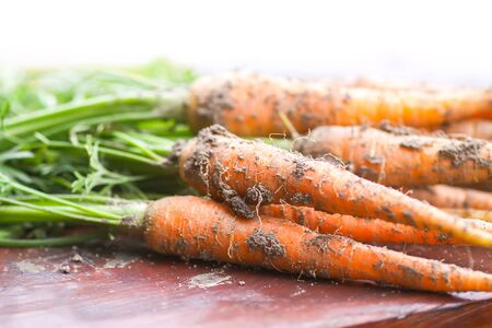 Foto für Unwashed vegetables. A bunch of fresh carrots outdoors. - Lizenzfreies Bild