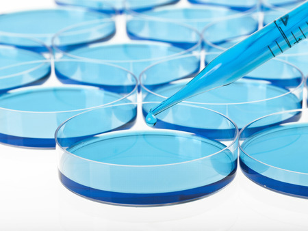 Petri dishes,pipette and liquid material. Laboratory concept.