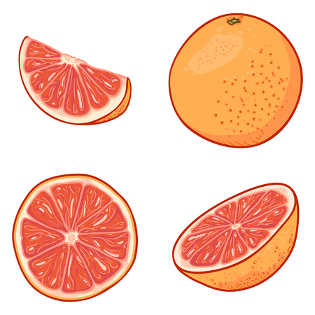 Illustration for Vector Set of Cartoon Grapefruits. Whole, Peeled and Sliced - Royalty Free Image