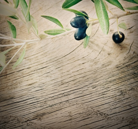 Summer olives nature background with fresh olive branch and wooden backgroundの写真素材