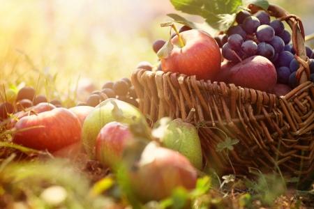 Organic fruit in basket in summer grass