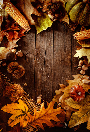 Thanksgiving dinner. Autumn fruit on wood with copyspace. Thanksgiving autumn backgroundの写真素材