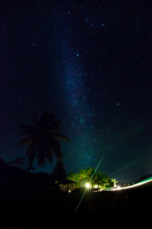Night sky over coconut palm trees on a beach, rocks, sea or ocean. The night sky with stars, meteorites, milky way and clouds. Night star photography with long exposure. Illustration of journey.