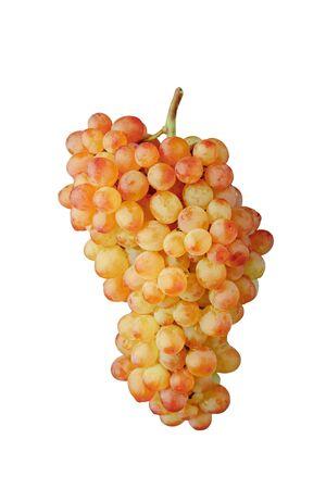 Foto für pink and green muscat grapes vine, isolated on white background - Lizenzfreies Bild