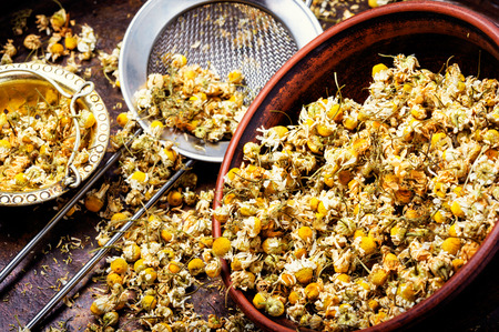 Dried chamomile flowers on wooden table.Alternative medicine