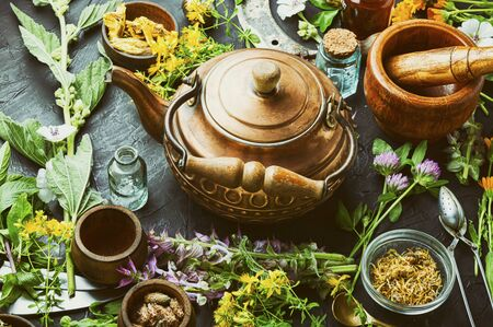 Photo for Fresh medicinal,healing herbs.Alternative medicine herbal.Natural herbal medicine - Royalty Free Image