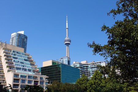 View of the CN Tower and buildings from Toronto Music Garden in summer, Toronto, Ontario, Canada