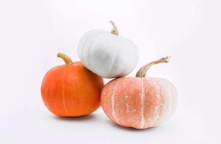 Foto de Pumpkins isolated on white with shadow and subtle reflection. Ripe orange, yellow and green white pumpkins. Harvest. - Imagen libre de derechos
