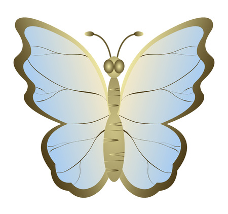 Foto per Decorative butterfly isolated on white background. EPS10. - Immagine Royalty Free