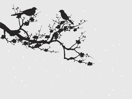 Silhouette of birds on Sakura blooming