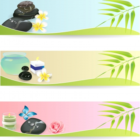 Illustration for Stone Spa Frangipani banner set - Royalty Free Image