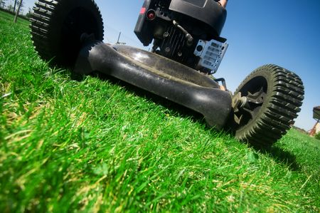 The lawn mower. Gardening series