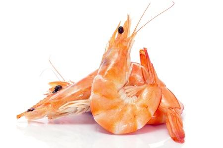 Photo pour some shrimps on a white background - image libre de droit