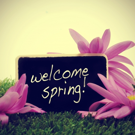 some flowers on the grass and a blackboard with the sentence welcome spring written in it, with a retro effect