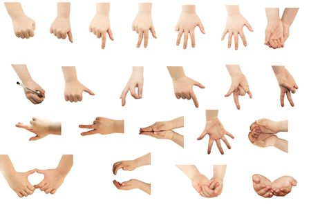 Selection of hands on white background