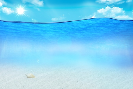 Beautiful picture under the ocean waters