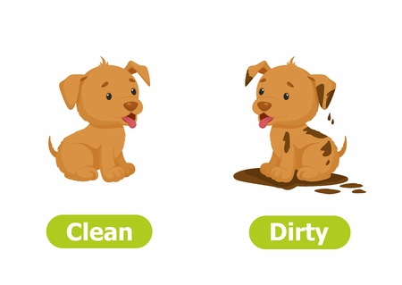 Illustration for Vector antonyms and opposites. Cartoon characters illustration on white background. Card for children Clean and Dirty. - Royalty Free Image