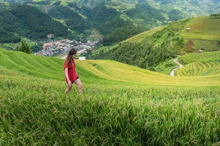a young woman traveller walking on the rice field at Mu Cang Chai district Yen Bai, Vietnam near Sapa, Vietnam that is famous place to travel in Southeast Asia.