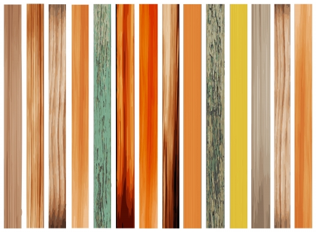 Colorful Texture of Wood