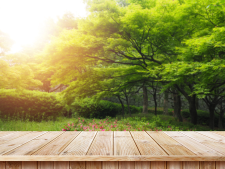 Foto per Table top and blur nature of the background, Green grass and trees beauty nature background. - Immagine Royalty Free