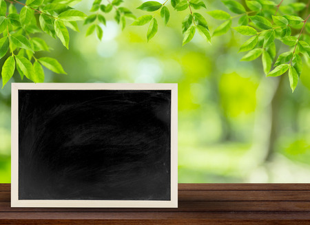 blackboard with wooden bamboo frame, blackboard on nature background for concept education