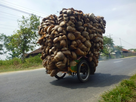 a motorist carry its load overload