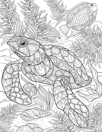 Pin by Becky Isaac on SEASHORE (With images)   Turtle coloring ...   450x348