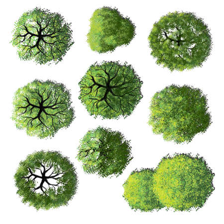 Photo pour Collection of abstract watercolor green tree top view isolated on white background for landscape plan and architecture layout drawing, elements for environment and garden. - image libre de droit
