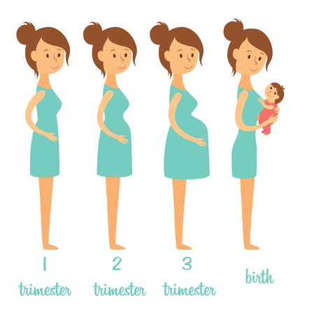 Illustration pour Stages of pregnancy. Changing the woman's body. Pregnant woman and her newborn baby - image libre de droit
