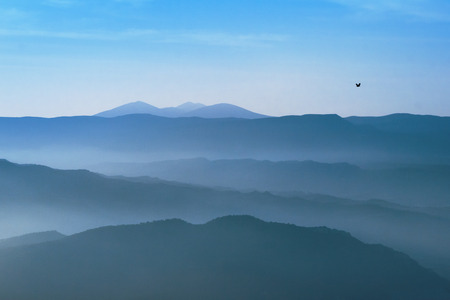 Bird flying over mountains of Natural Park of the Sierra and Caà± ones de Guara in Pano, Huesca, Spain