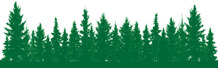 Illustration pour Forest of fir trees silhouette. Park alley of evergreen wood. Coniferous spruce. Vector on white background - image libre de droit