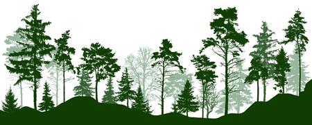 Illustration pour Forest silhouette green trees. Coniferous evergreen forest, park, alley. Vector illustration - image libre de droit