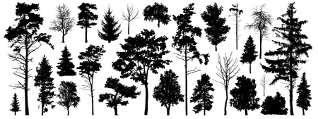 Illustration pour Tree silhouette vector. Isolated forest trees on white background - image libre de droit