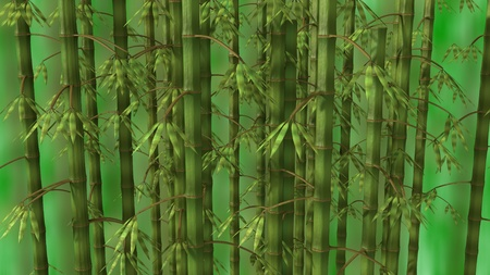 Bamboo forest over green background