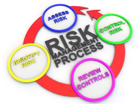 chart of risk management process
