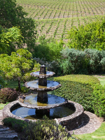 Beautiful landscape with water fountain and vineyards in Napa Valley, California.