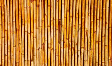 a bamboo wall background