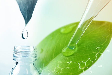 Photo pour water drop from leaf and laboratory for natural chemistry concept - image libre de droit