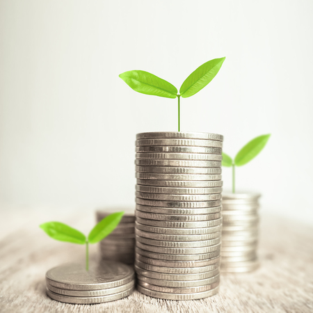 Growing plant on rows of coin money for finance and banking concept