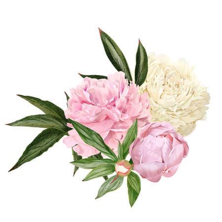 Illustration pour Lush hand drawn peony bouquet, white and pink flowers - image libre de droit