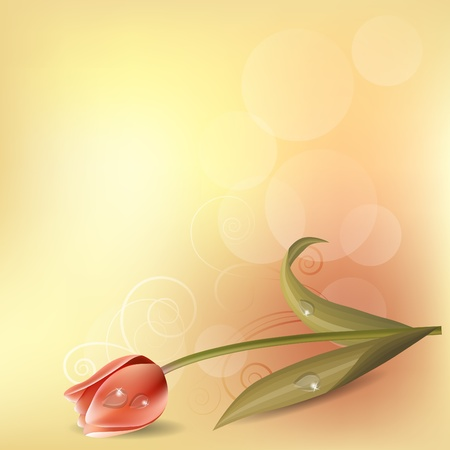 Pastel background with tulip