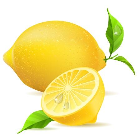 Realistic lemon and half