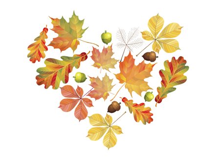Illustration pour Heart of colorful autumn leaves isolated on white background. Simple cartoon flat style. Vector illustration - image libre de droit